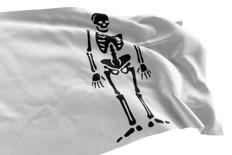 Pirate Flag of La Buse - Sons of Pirate