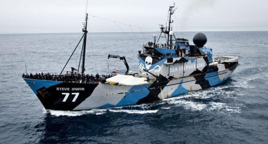 Sea Shepherd Boat Flag - Sons of Pirate