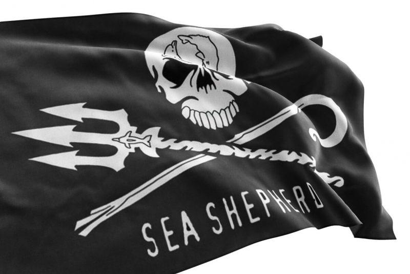 Sea Shepherd Jolly Roger - Sons of Pirate