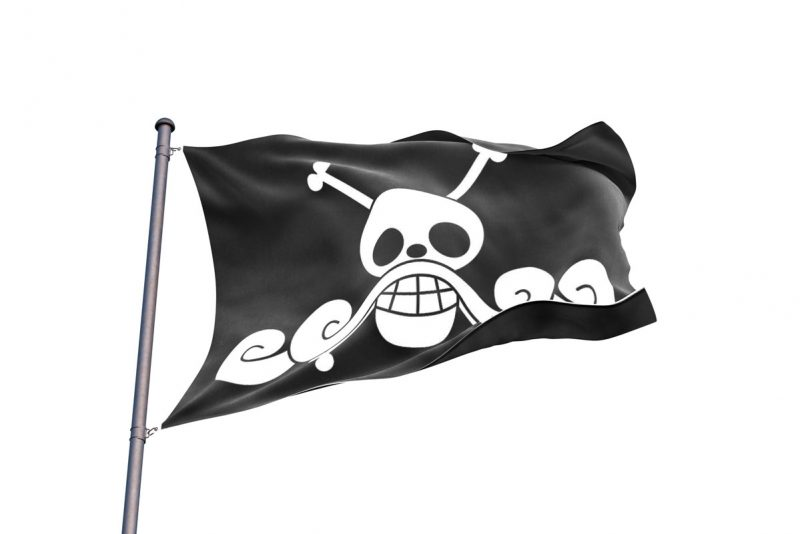 Gol D Roger Pirate Flag - Pirate Flag - Sons of Pirate
