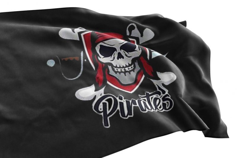 Modern Pirate Flag - Pirate Flag - Sons of Pirate