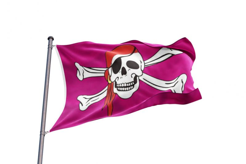 Pink Pirate Flag Jolly Roger- Pirate Flag - Sons of Pirate