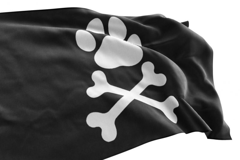 Pirate Dog Skeleton Flag - Pirate Flag - Sons of Pirate