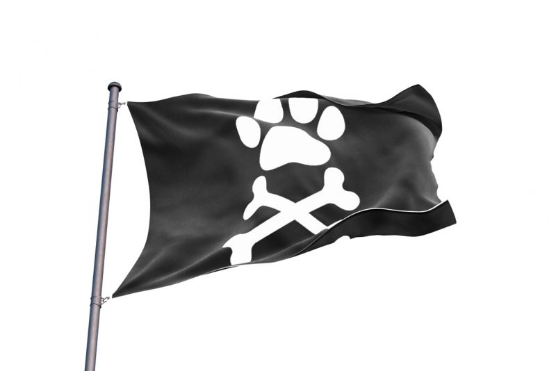 Pirate Flag Dog Tag - Pirate Flag - Sons of Pirate