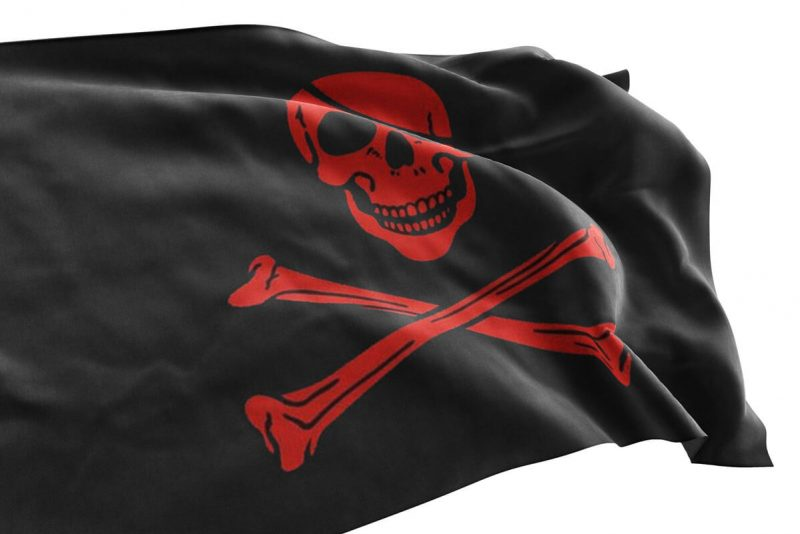 Red Skeleton Pirate Flag - Pirate Flag - Sons of Pirate