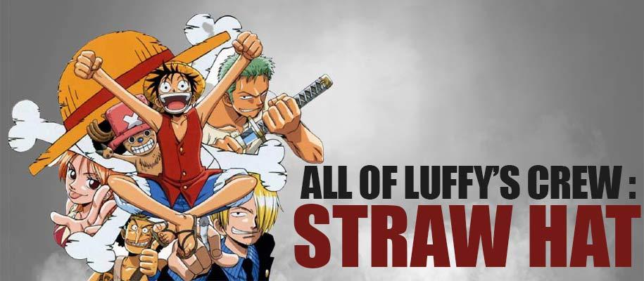 Luffy Crew Straw Hat