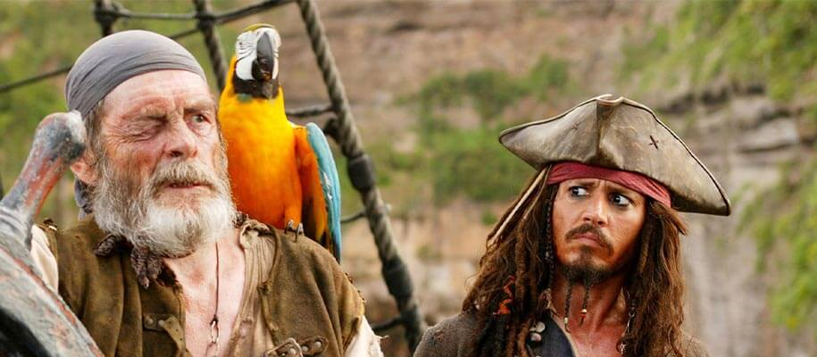 Why do pirates have parrots ?
